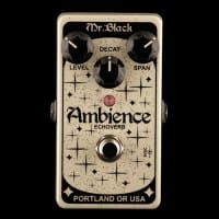 New Pedals: Mr. Black Ambience Echoverb
