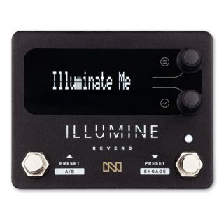 Now Shipping: Neunaber Illumine Stereo Multi-Reverb